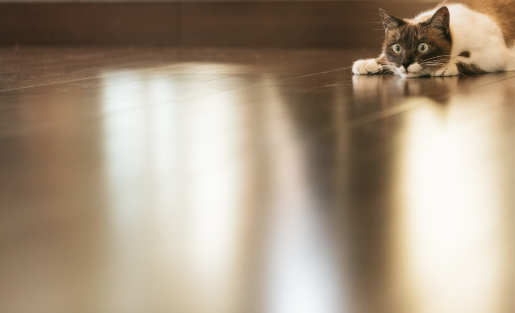 温水式の床暖房の仕組み【メリットとデメリットも解説】
